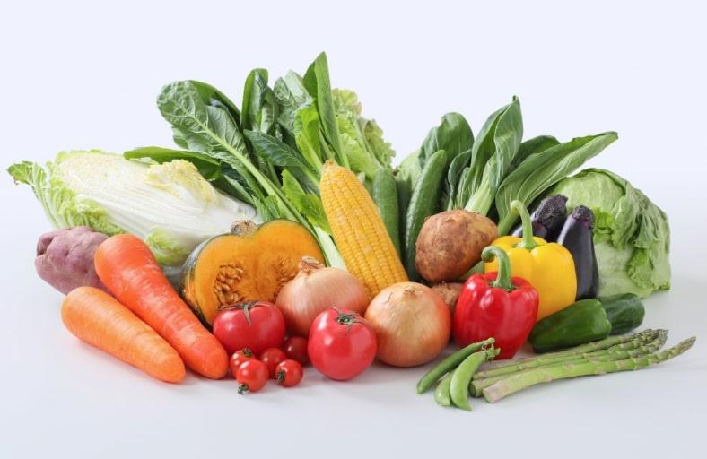 角質肥厚 栄養不足