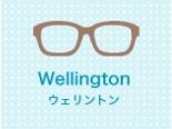 ウェリントン型のサングラス