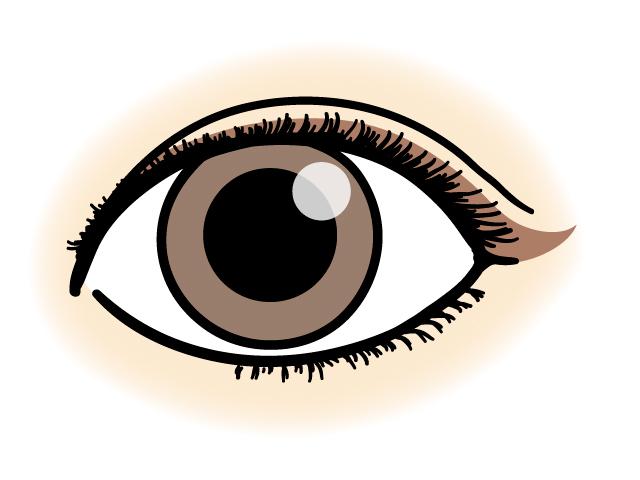 奥二重の目のアイラインの引き方のコツ