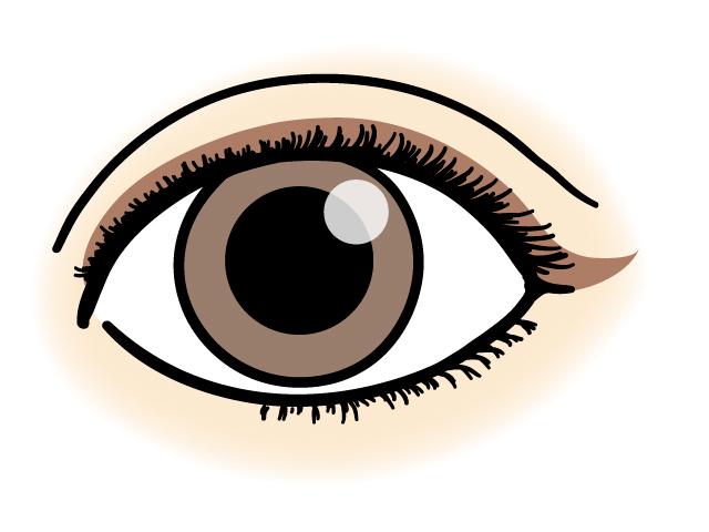 二重の目のアイラインの引き方のコツ