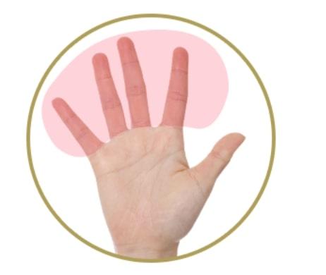 指の腹全体を使う
